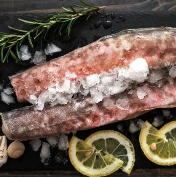 Рыба конгрио HGT